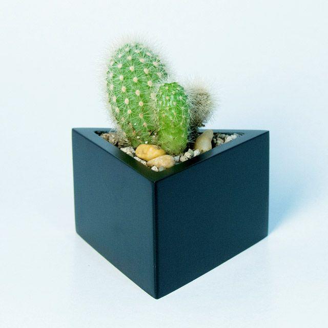 Prisma -  vas pentru plante, de la Atelierro. Geometrica, o colectie de vase moderne, ideale pentru plante suculente sau cactusi, acasa sau la birou. Create de Atelierro. http://www.atelierro.eu