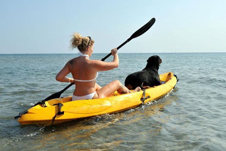 TripBucket - Take my Dog Kayaking