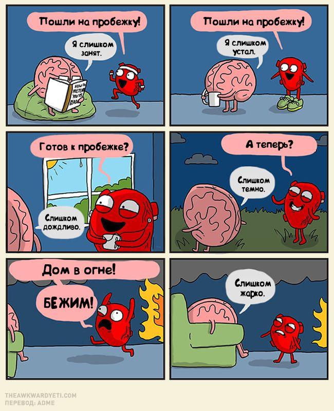 Мозг и сердце смешные картинки