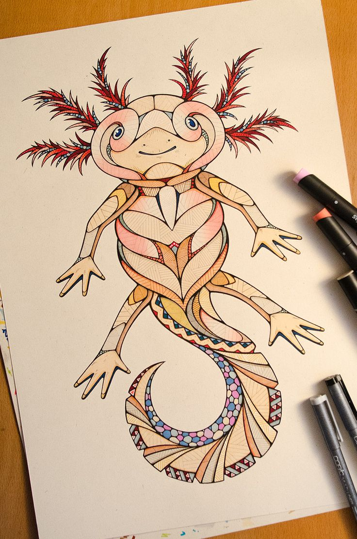 axolotl drawing by andreas preis animal poker www. Black Bedroom Furniture Sets. Home Design Ideas