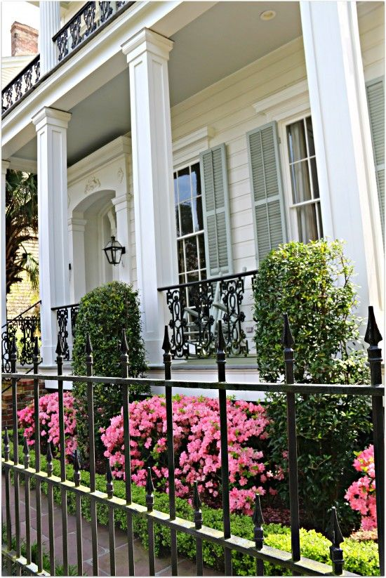New Orleans Homes and Neighborhoods » Spring in New Orleans, Home and Plants Show Off Their Colors