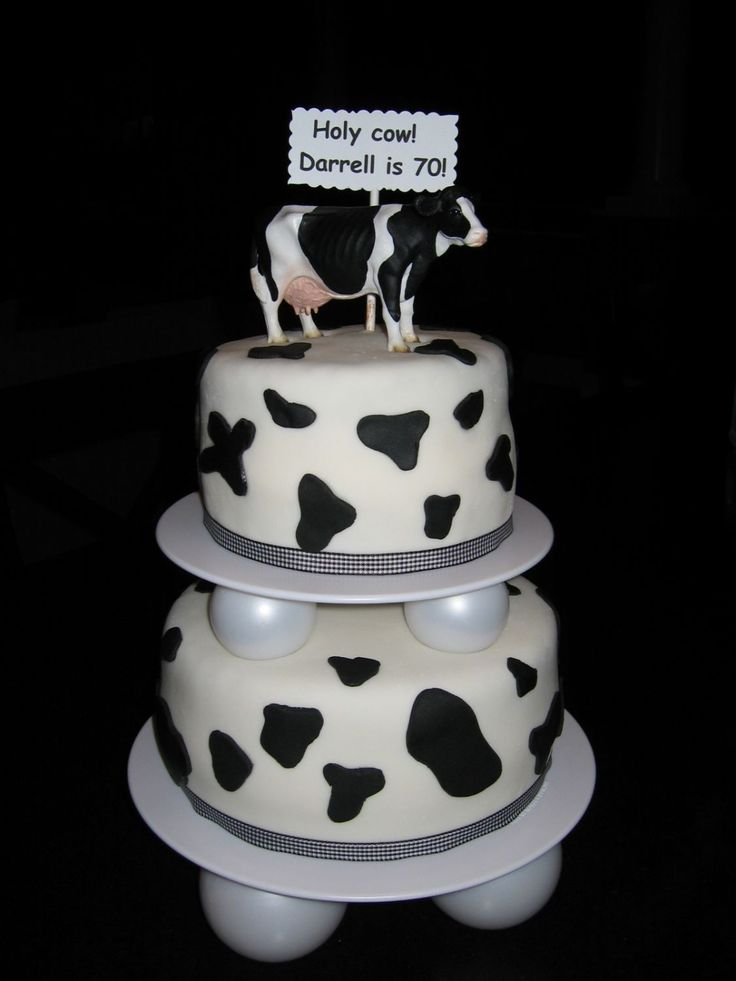 Cow birthday cake - I made a holstein-like cake for my dad's birthday party tomorrow. My dad is a dariy farmer, that's why I did the cow theme. It is covered in MMF, but the spots are Wilton pre-colored fondant in black. The cow is plastic and came from Farm Fleet! I haven't made anything for about 3 months due to moving.....and I was a little rusty. I think the new Wilton globes I used look cute though! I should've tried to make the cow out of fondant, but I ended up doing this at the ...