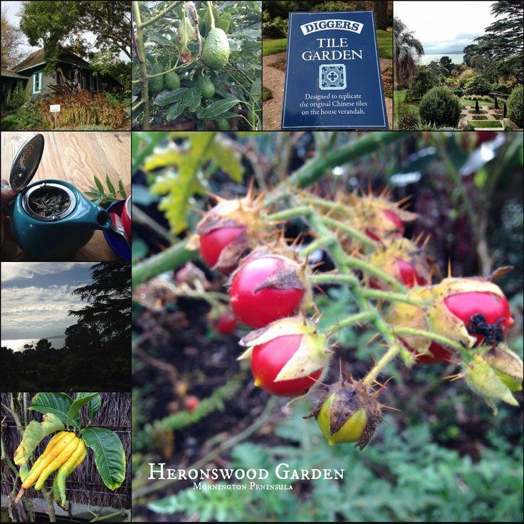 Heronswood Garden - Mornington Peninsula