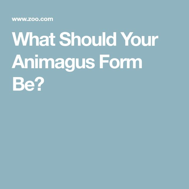 What Should Your Animagus Form Be?