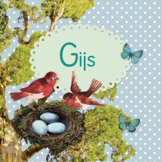 Geboortekaartje Gijs - vrolijke geboortekaartje met vogeltjes bij een enstje met eitjes- www.petitkonijn.nl