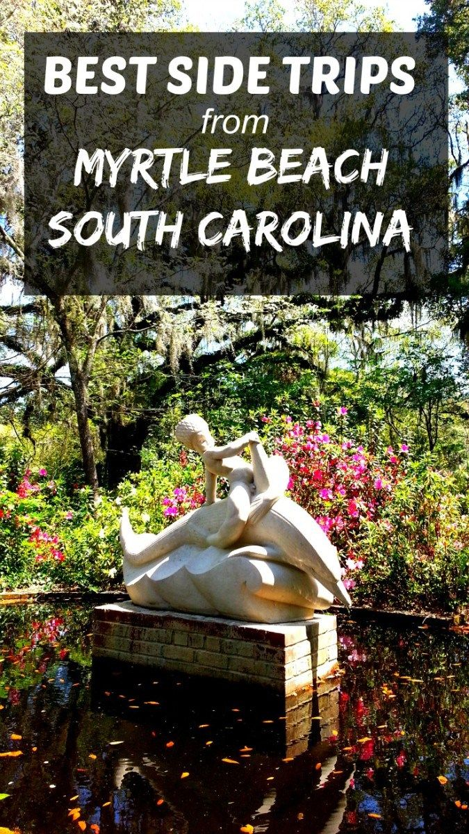 So many things to do around Myrtle Beach: Huntington Beach State Park, Brookgreen Gardens, Murrells Inlet, The Market Commons.