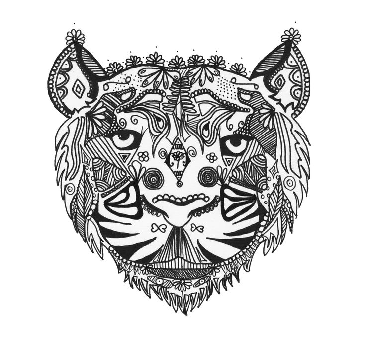zentangle coloring page tiger lion drawing amazing art - Coloring Pages Tigers Lions