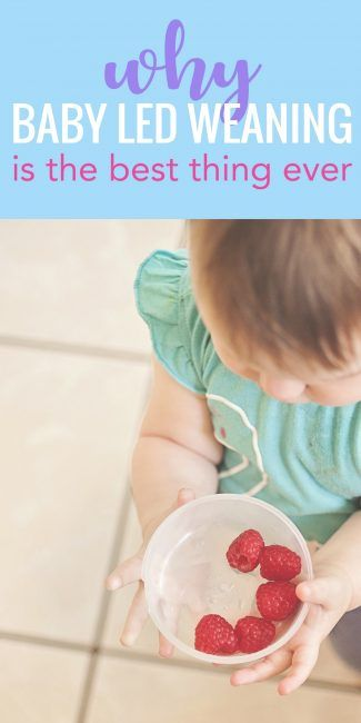 Why Baby Led Weaning Is The Smartest Thing Ever Baby Led Weaning