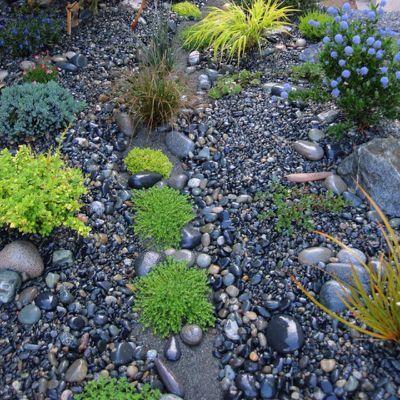 Rock Garden | River Rock Gardens