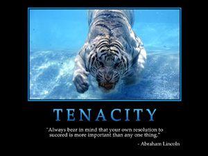Tenacity -