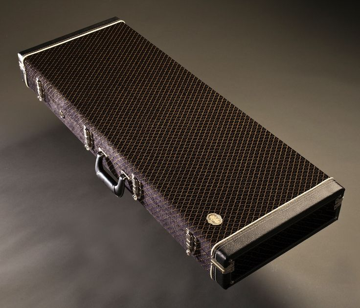 custom guitar case guitars pinterest. Black Bedroom Furniture Sets. Home Design Ideas