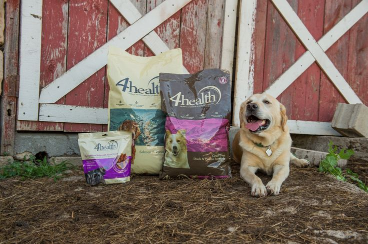 Thousands of TOP-RATED, amazing reviews online and all at an affordable price -- Try 4Health dog and cat food for a noticeable difference in your pet.