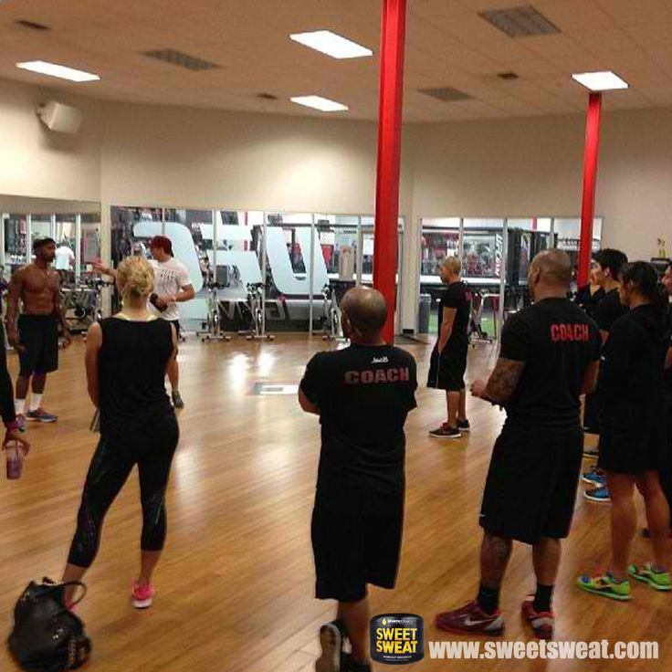 Best images about mma gyms on pinterest charleston sc