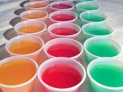 margarita, fuzzy naval, jolly rancher, strawberry daiquiri, and peach pie jello shots!