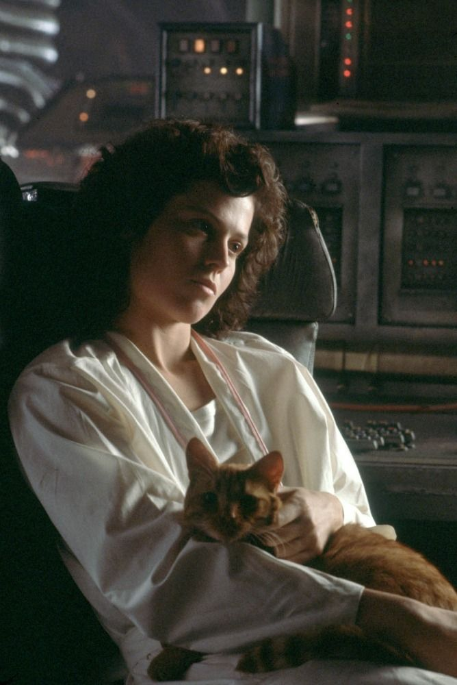 Sigourney Weaver and a cat