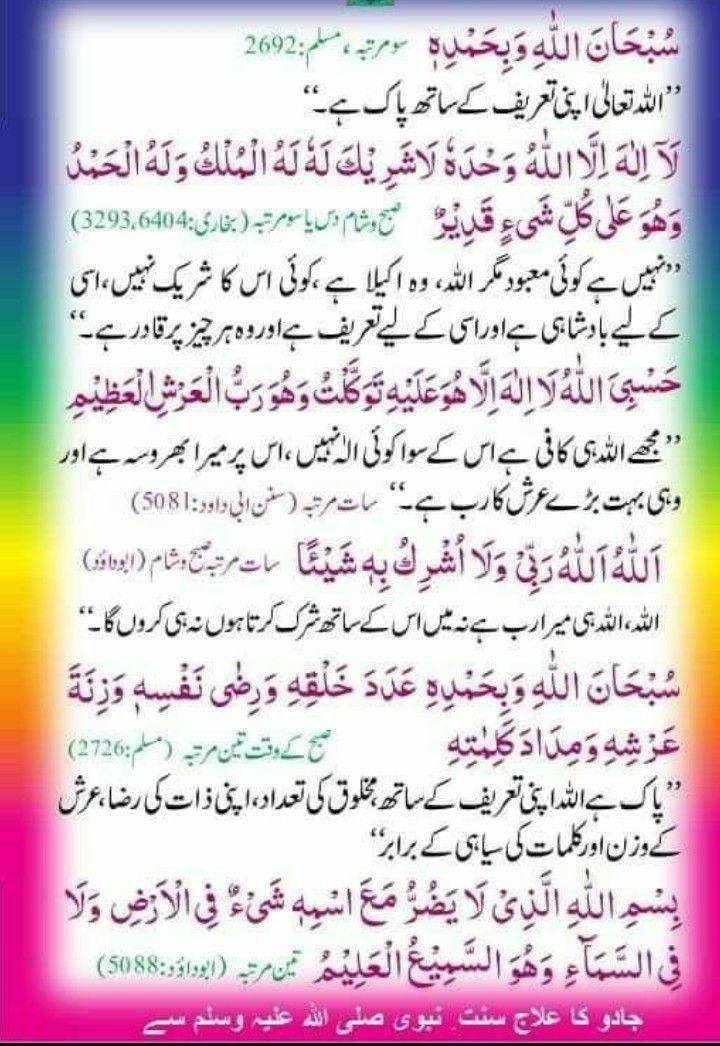 Pin by Faiza's Diary🌻 on Quransayingsdua & Urdu quotes