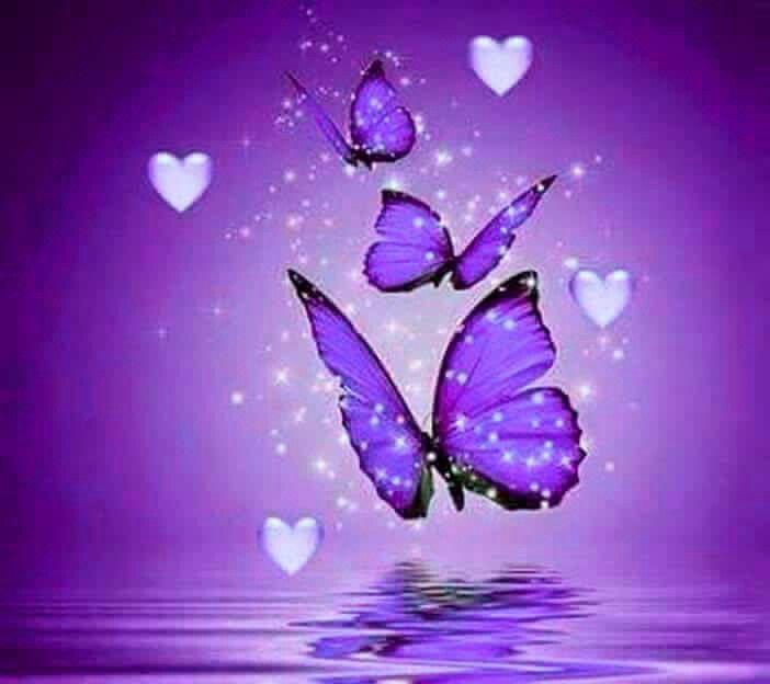 Purple Butterflies In 2019 Purple Purple Aesthetic
