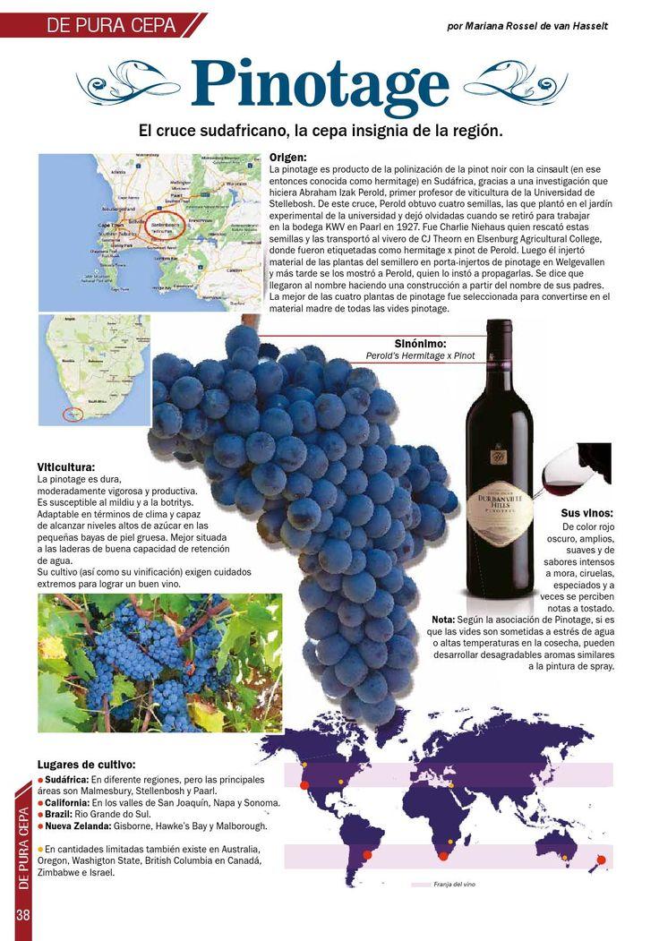 Vinos, gastronomía, destilados, coctelería, arte, cultura y más.