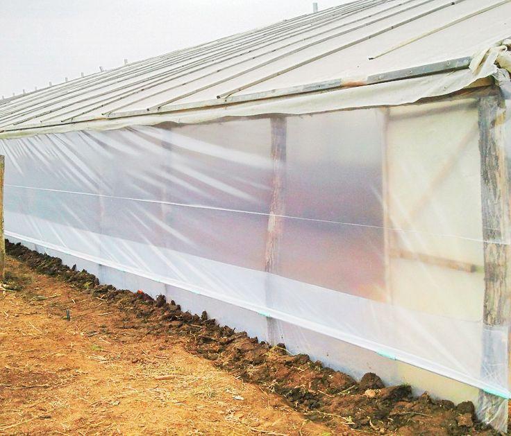 Folia de pereti pentru sere si solarii din polietilena, productie turceasca. Folie Solar