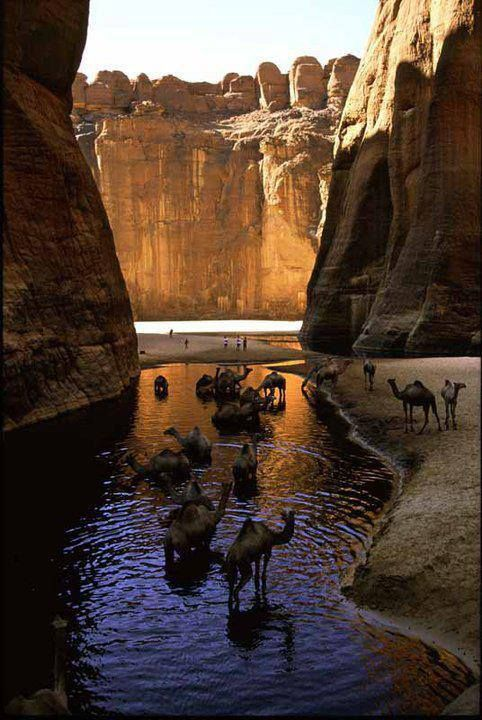 "Beautiful algerie algeria .................. #GlobeTripper® | https://www.globe-tripper.com | ""Home-made Hospitality"""