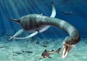 How did plesiosaurs swim with such long necks? #Geology #GeologyPage