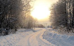 природа, пейзажи, зима, зимние обои, фото, снег, дорога, леса, дерево, дороги, деревья, дома, домики