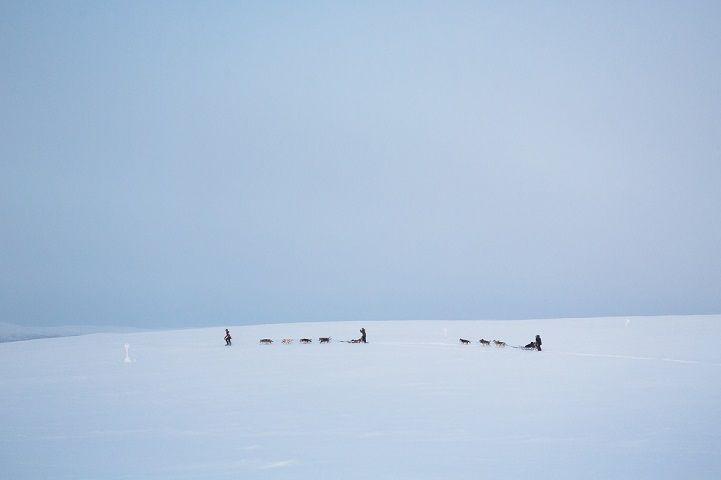 Brice Portolano - Arctic Love