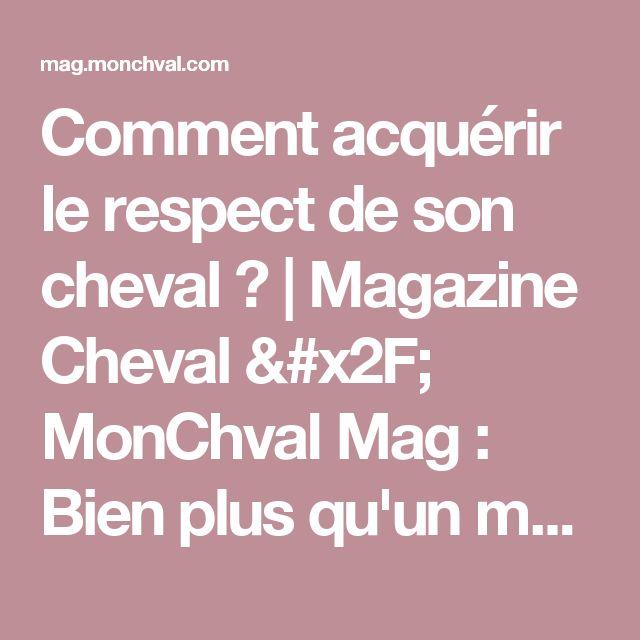 Comment acquérir le respect de son cheval ?   Magazine Cheval / MonChval Mag : Bien plus qu'un magazine sur le cheval et l'équitation !