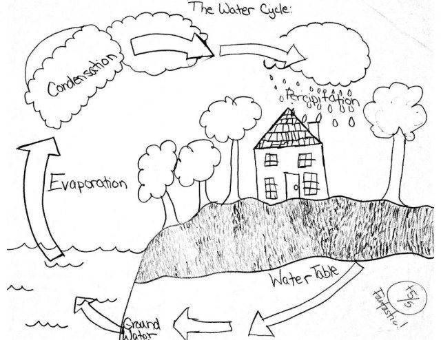 Exclusive Picture Of Water Cycle Coloring Page Simple Water