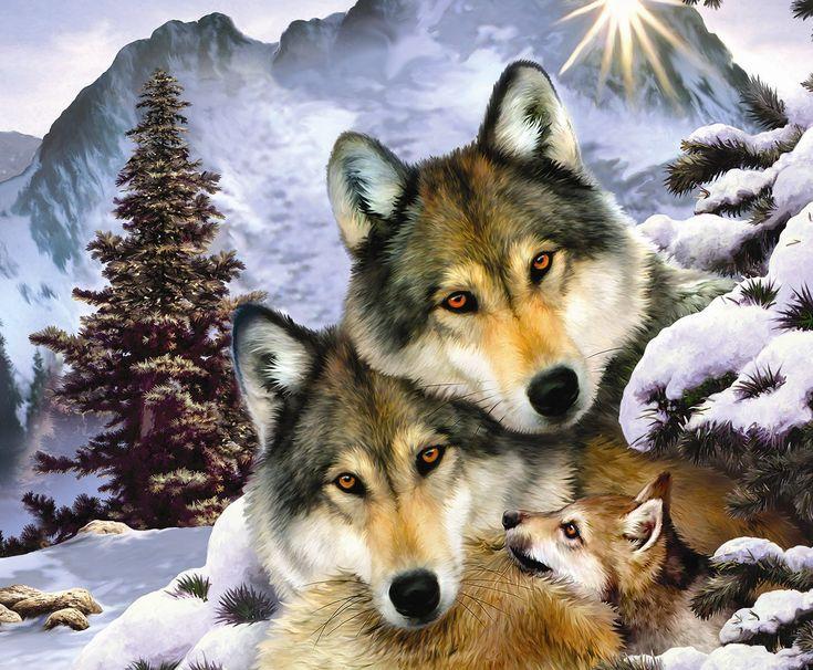 Волчья семья - обои на рабочий стол