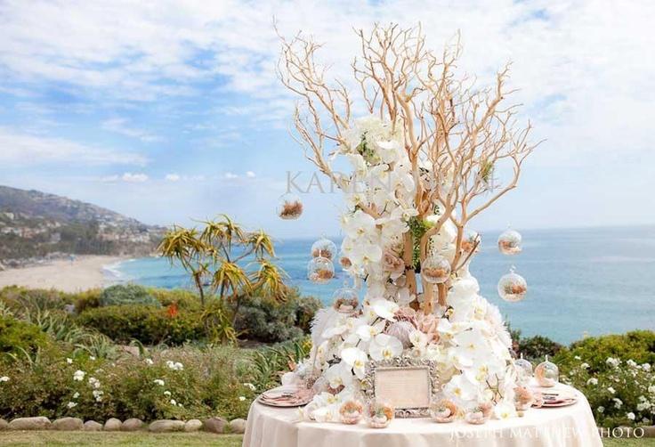 Love White Weddings Pinterest Manzanita Tree