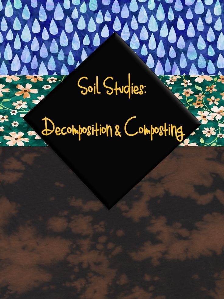 You can teach your elementary students about the science behind decomposition and composting.