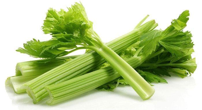 الكرفس هو من النباتات الخضراء المفيدة لصحة الجسم لما يحتويه على الكثير من الفيتامينات والمعادن المهمة لصحة الجسم وهو ينمو Celery Benefits Celery Diuretic Foods