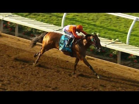 Beholder WINS the TVG Pacific Classic - Race Replay 2015 - Horse Racing News videos