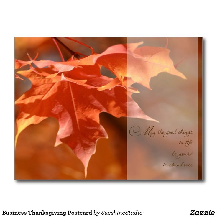 31 best businesscorporate thanksgiving cards and postcards images business thanksgiving postcard m4hsunfo Gallery