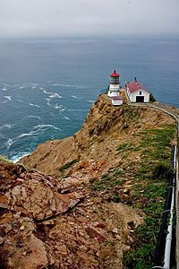If you are in northern California, go to Point Reyes National Seashore. Just do it.