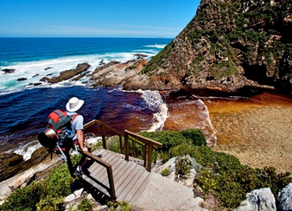 Another chapter in Scott Ramsay's epic Year in the Wild: Garden Route National Park #yearinthewild #wildlife #nature #southafrica #ScottRamsay #Getawaymagazine