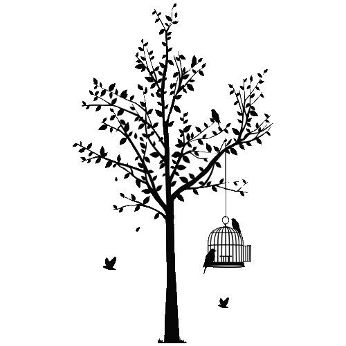 Birdcage hunging on a tree , Vinyl Sticker, Stickers - Vinyl Sticker Wall Art Deco Decal 60cm Height,24cm Width - Black Vinyl:Amazon.co.uk:Car & Motorbike