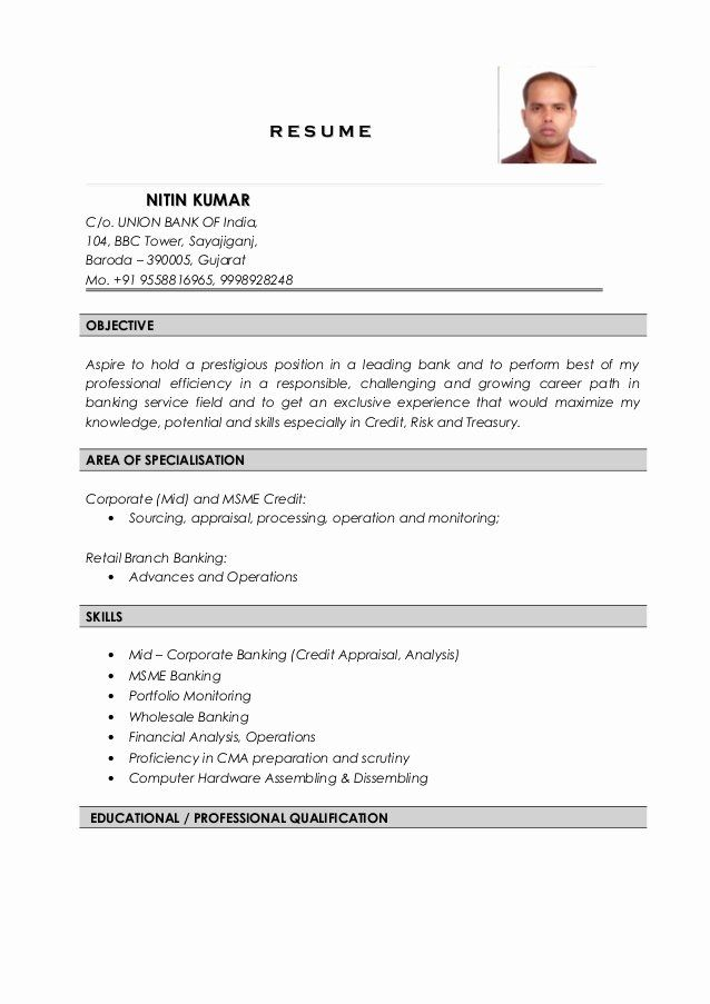 Credit Analyst Resume Example Best Of Pabitra Adhikary Resume Credit Manager Retail Manager In 2020 Manager Resume Resume Sample Resume
