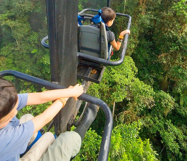 """""""Sky Bike"""" Lets You Explore Andean Cloud Forest from 196-Feet above Ground"""