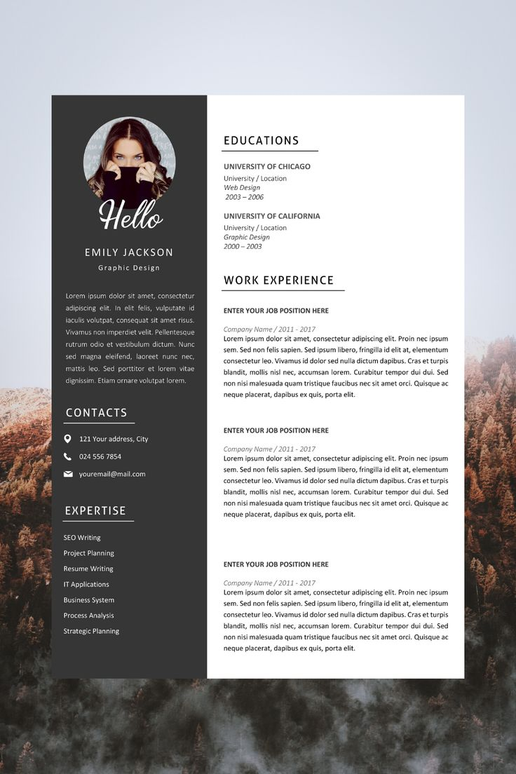 Modern Resume Template Design Resume Template Emily
