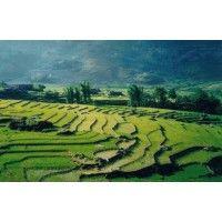 Vietnam travel News | vietnamtravel