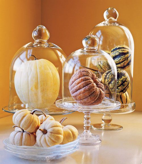 Elegant Pumpkin Display                  Display all types of winter squash under glass cloches. You may have a jack-o'-lantern on the porch, but these beauties take the cucurbita to new heights 鈥?especially when elevated on cake stands, a nod to their eventual conversion to a holiday treat.