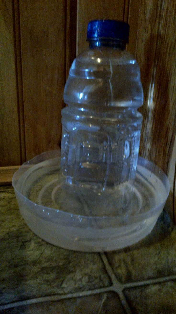 Diy automatic cat watering bowl...brilliant and easy from recycled materials
