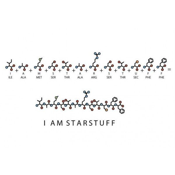 I Am Starstuff Necklace