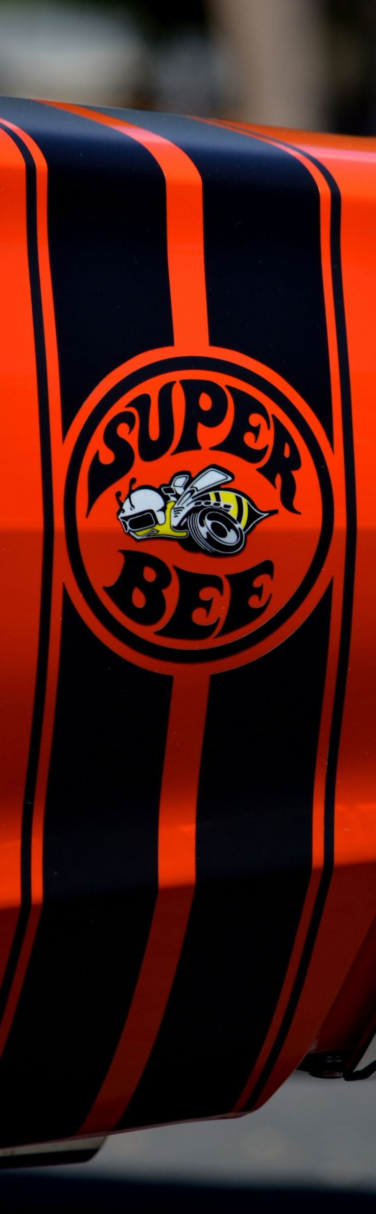 Super Bee...Re-pin brought to you by agents of #Carinsurance at #HouseofInsurance in Eugene, Oregon