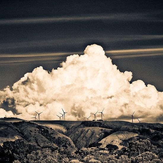 Wind Farm | Palmerston North