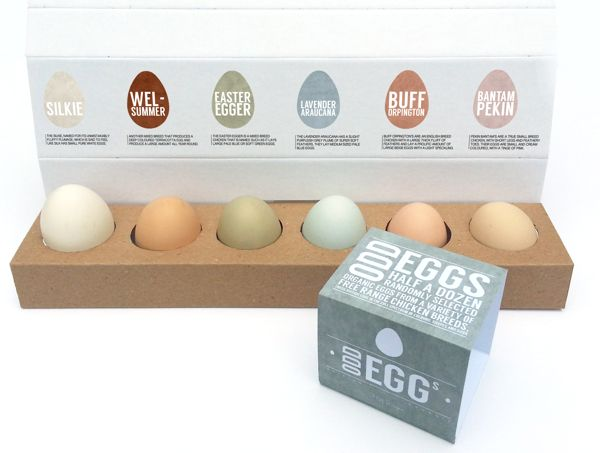 Odd Eggs - Egg Box Design