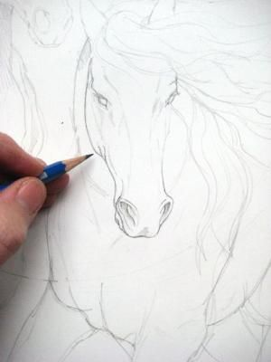 Ten Best Drawing Tips And Seven New Drawings | Art With Heart: Drawing & Painting With Bergsma - blog.bergsma.com/...