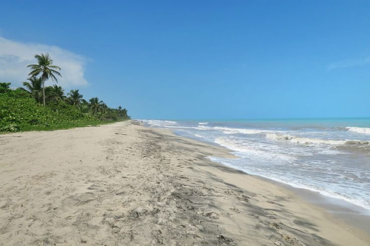 The beach in Palomino Colombia